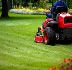 Lawn and Landscaping Services by Naturescapes of Nashville, TN