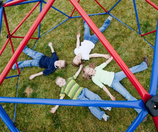 Kids Dome Climber Swingsets And Playsets Nashville Tn